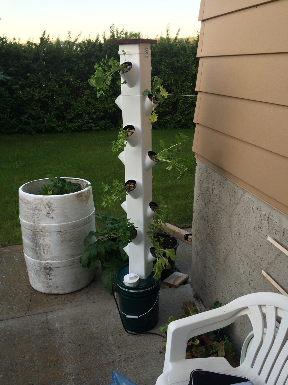Hydroponic Tower Garden Part 4 (Final) | Economically Green